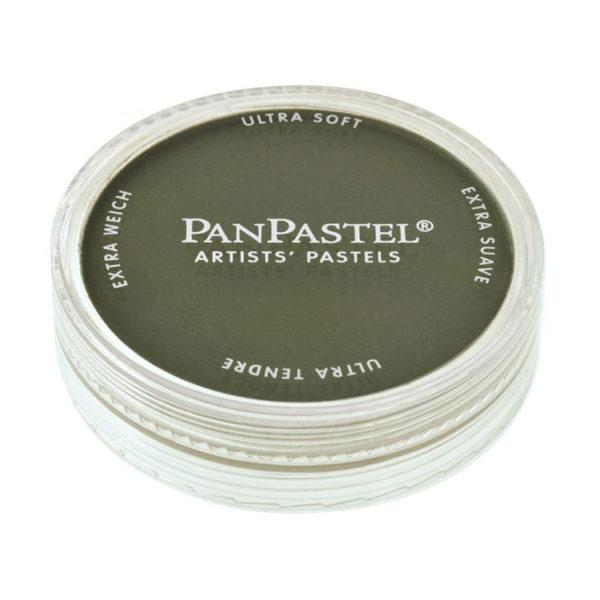 Panpastel bright yellow green extra dark